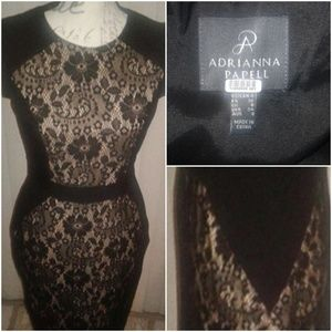 Adrianna Papell Fitted Illusion Dress Size 4